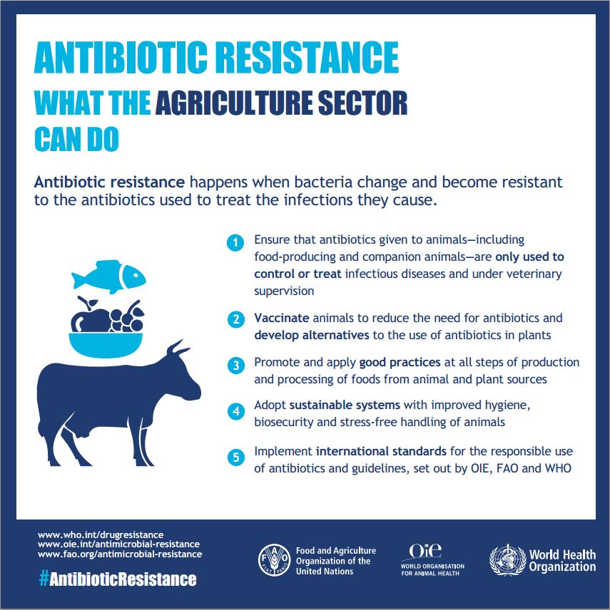 Antibiotic Resistance What Agriculture Sector Can Do